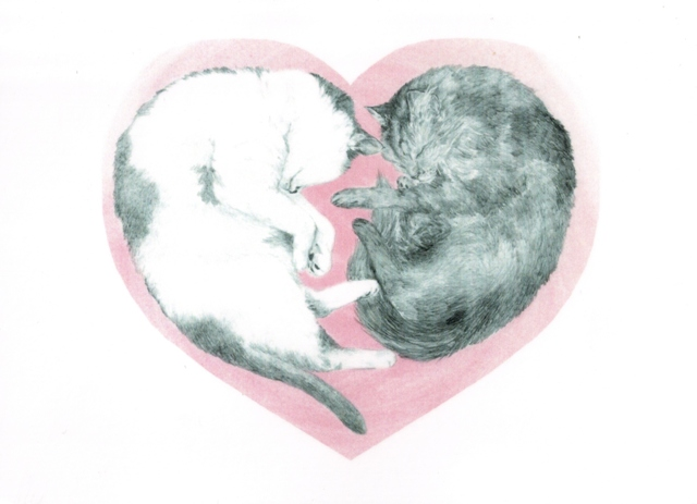 cats-heart-from-julia-ukraine