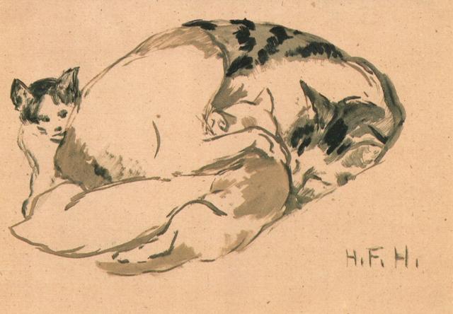 cats-rr-fl-21-1