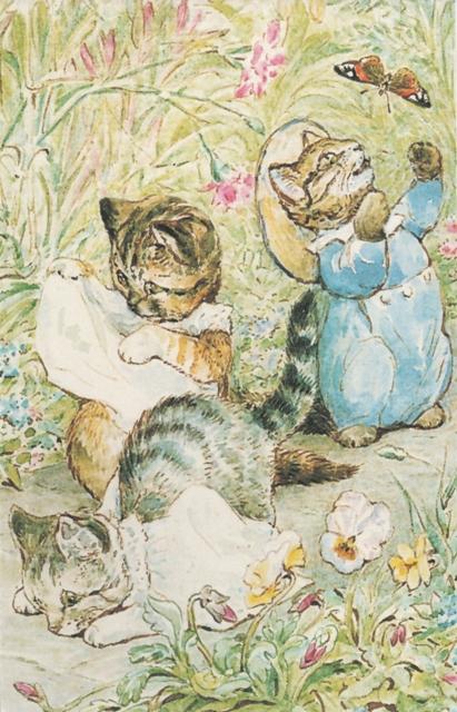kitten-tales-from-karen-2