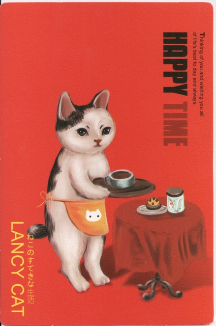 lancy-cat-3