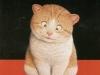 cat-tag-from-tinki81-nl