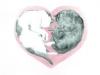 cats-heart-from-julia-ukraine