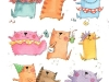 celebrating-cats-from-kotona