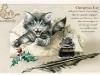 chats-enchantes-3