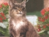 gr-110-cats-in-art-from-ivus
