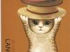 lancy-cat-1