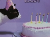 nelly-s-birthday-card-from-anne-marie-belgium-fb-640x639