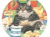 round-cat-3-from-karen-uk
