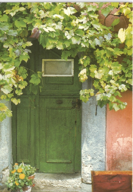 dutch-door-from-bookoholik-netherlands