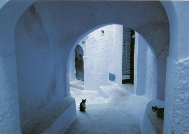 moroccan-door7-from-karen