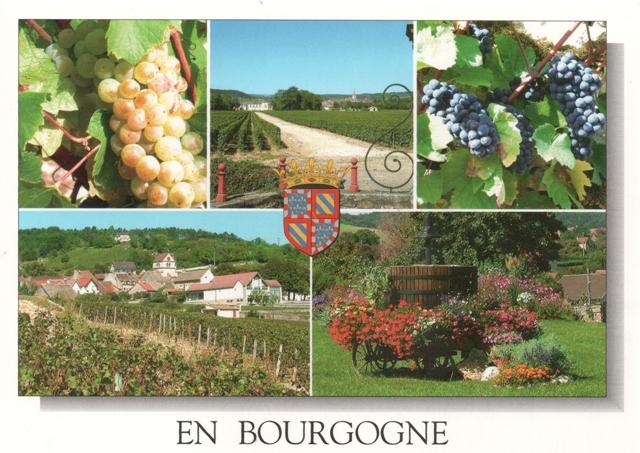 bourgogne5
