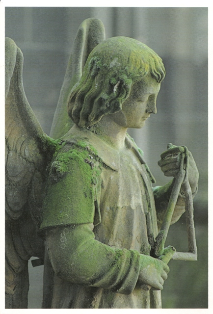 angel-hertogenbosch, Nimmoe-Lenny