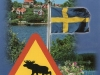 moose-sign-from-merja-sweden