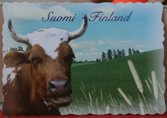 003, Cow from Finland