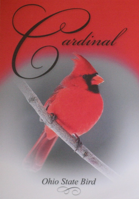 013, Cardinal, Ohio state bird, from silencedogwood