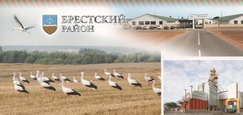 021, storks-belorussia