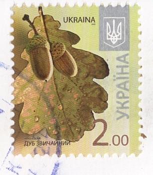 oak-stamp
