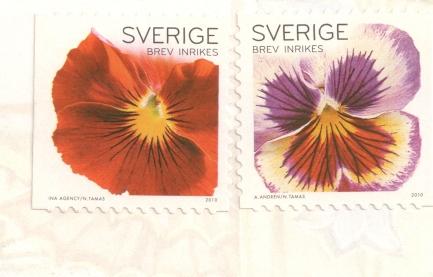 swer-flowers