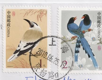 china-birds