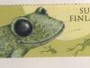 frog-stamp