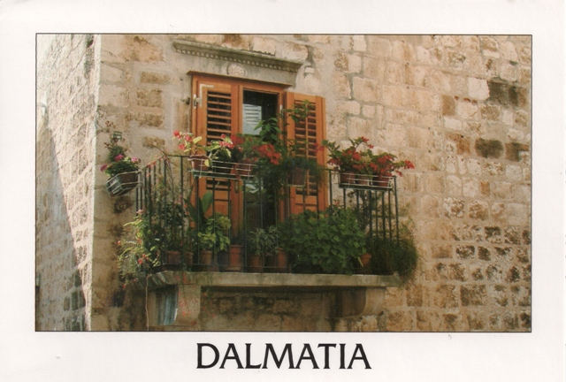 dalmatia-window from ddonkey