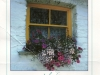 irish-window-from-reka