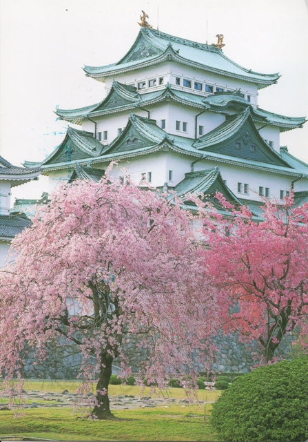 nagoya-castle-japan, from Maddy